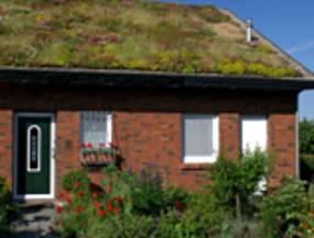 Super energiesparen-im-haushalt.de - Gründach Kosten - Gründächer IA74